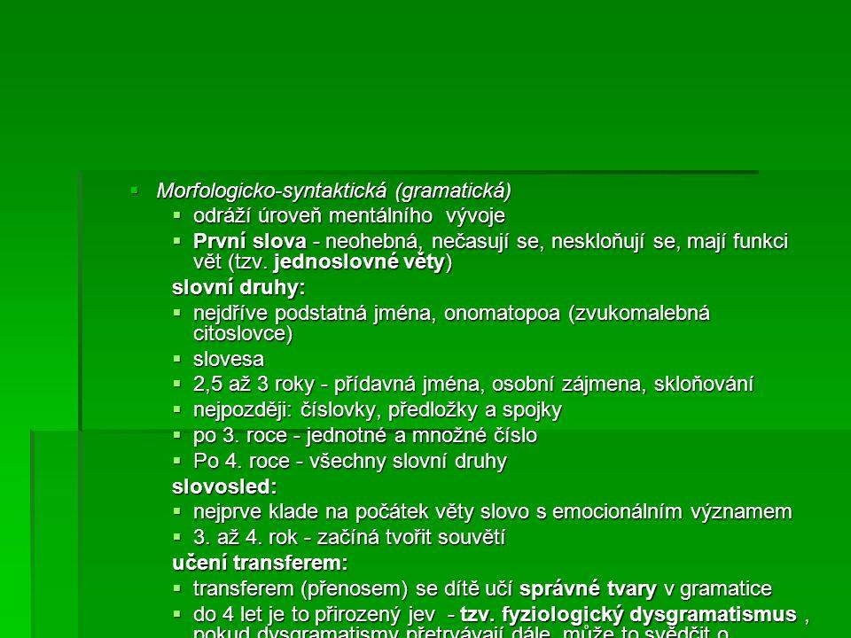  Morfologicko-syntaktická (gramatická)  odráží úroveň mentálního vývoje  První slova - neohebná, nečasují se, neskloňují se, mají funkci vět (tzv.