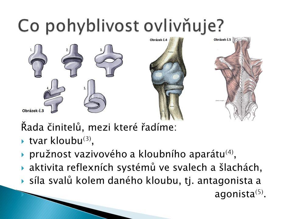 Řada činitelů, mezi které řadíme:  tvar kloubu (3),  pružnost vazivového a kloubního aparátu (4),  aktivita reflexních systémů ve svalech a šlachách,  síla svalů kolem daného kloubu, tj.