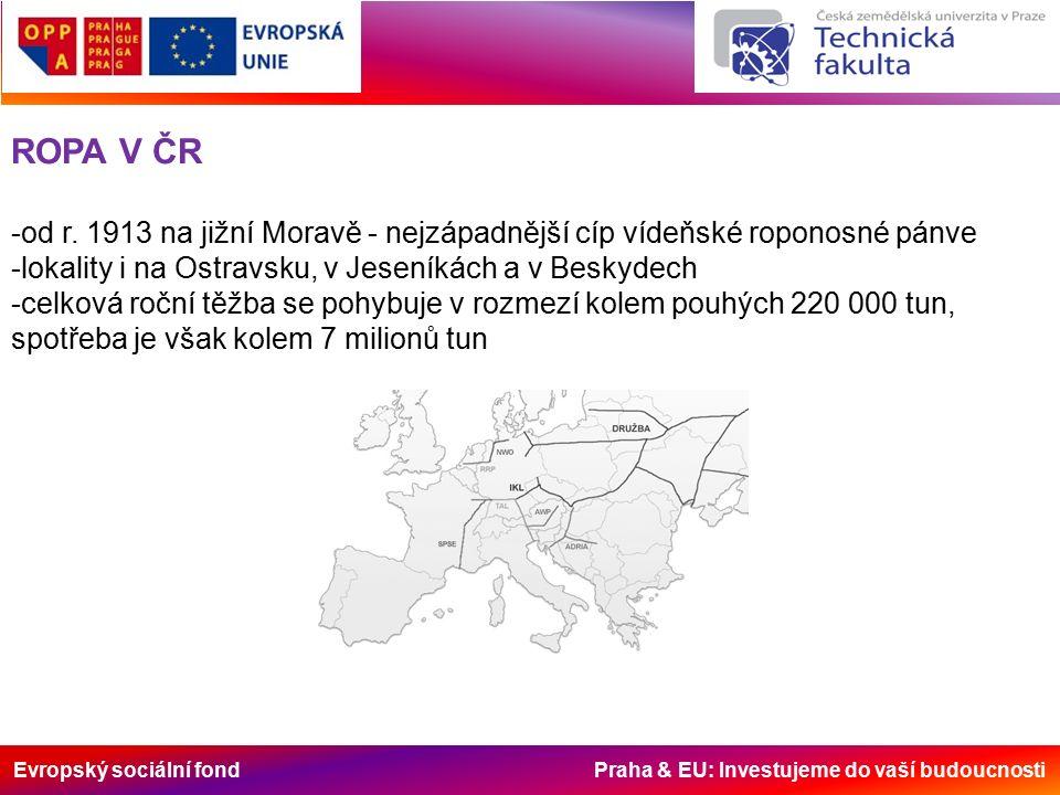 Evropský sociální fond Praha & EU: Investujeme do vaší budoucnosti ROPA V ČR -od r.