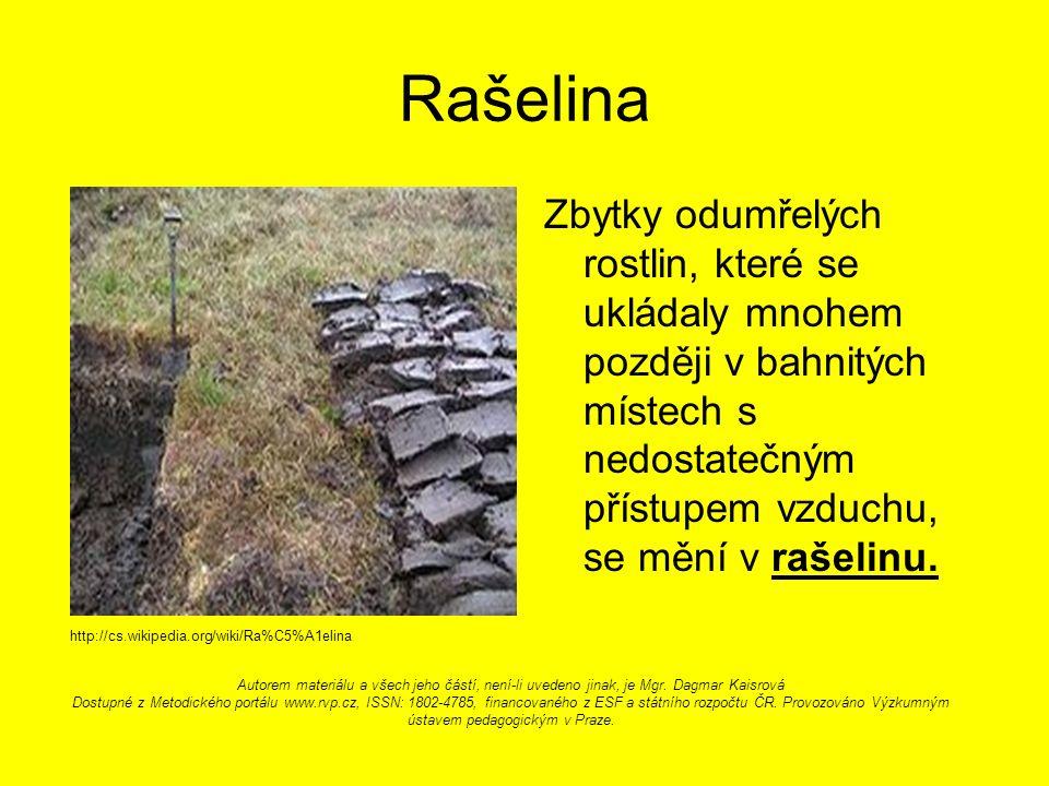 Rašelina Zbytky odumřelých rostlin, které se ukládaly mnohem později v bahnitých místech s nedostatečným přístupem vzduchu, se mění v rašelinu.