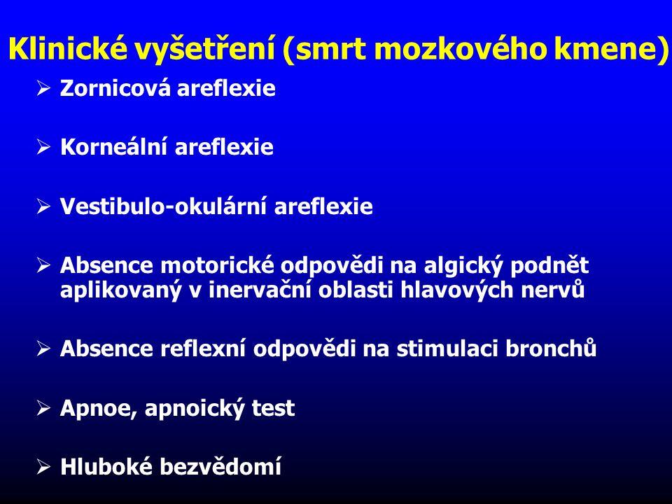 Klinické vyšetření (smrt mozkového kmene)  Zornicová areflexie  Korneální areflexie  Vestibulo-okulární areflexie  Absence motorické odpovědi na a