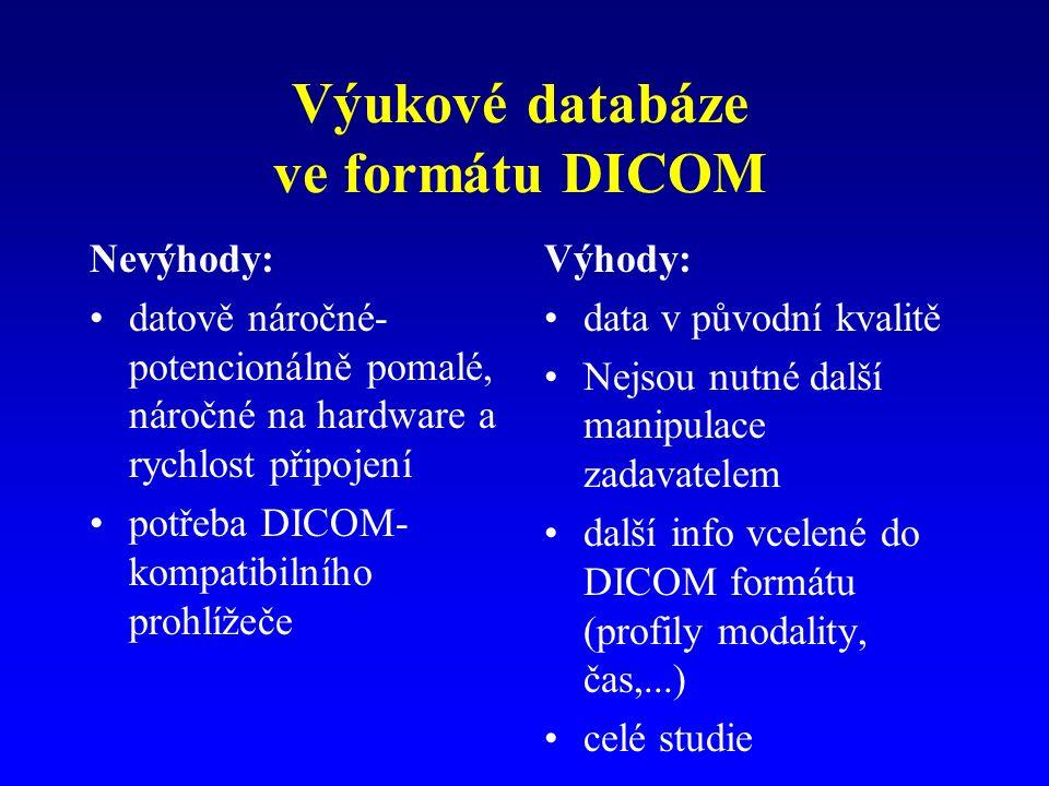 Výukové databáze ve formátu DICOM Nevýhody: datově náročné- potencionálně pomalé, náročné na hardware a rychlost připojení potřeba DICOM- kompatibilního prohlížeče Výhody: data v původní kvalitě Nejsou nutné další manipulace zadavatelem další info vcelené do DICOM formátu (profily modality, čas,...) celé studie