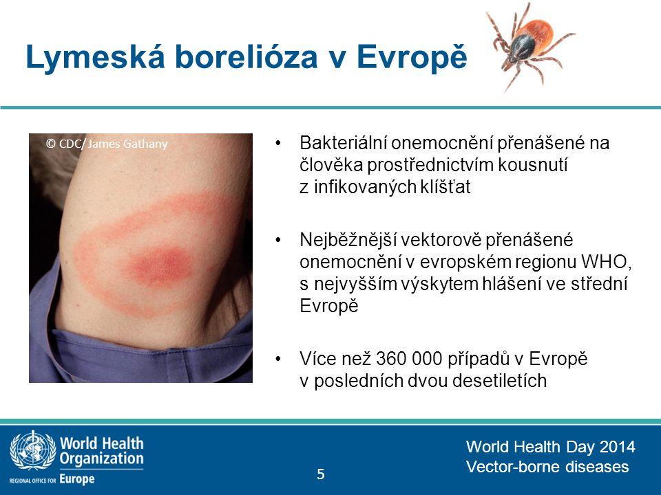 Lymeská borelióza v Evropě Bakteriální onemocnění přenášené na člověka prostřednictvím kousnutí z infikovaných klíšťat Nejběžnější vektorově přenášené