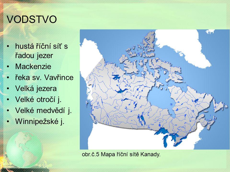 VODSTVO hustá říční síť s řadou jezer Mackenzie řeka sv. Vavřince Velká jezera Velké otročí j. Velké medvědí j. Winnipežské j. obr.č.5 Mapa říční sítě