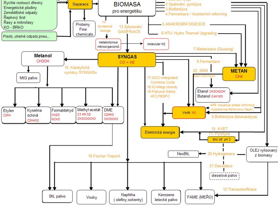 Lesní těžební zbytky Rychle rostoucí dřeviny Energetické plodiny Zemědělské odpady Řepkový šrot Řasy a mikrořasy KO - BRKO OLEJ vylisovaný z biomasy M