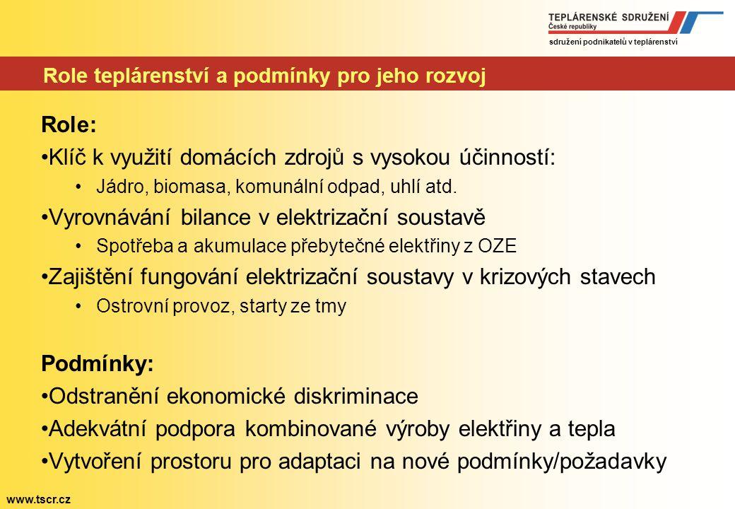 sdružení podnikatelů v teplárenství www.tscr.cz Strategický pohled Rozdělení na dvě části s odlišnou úrovní detailu: 2030 Detailní program včetně časo