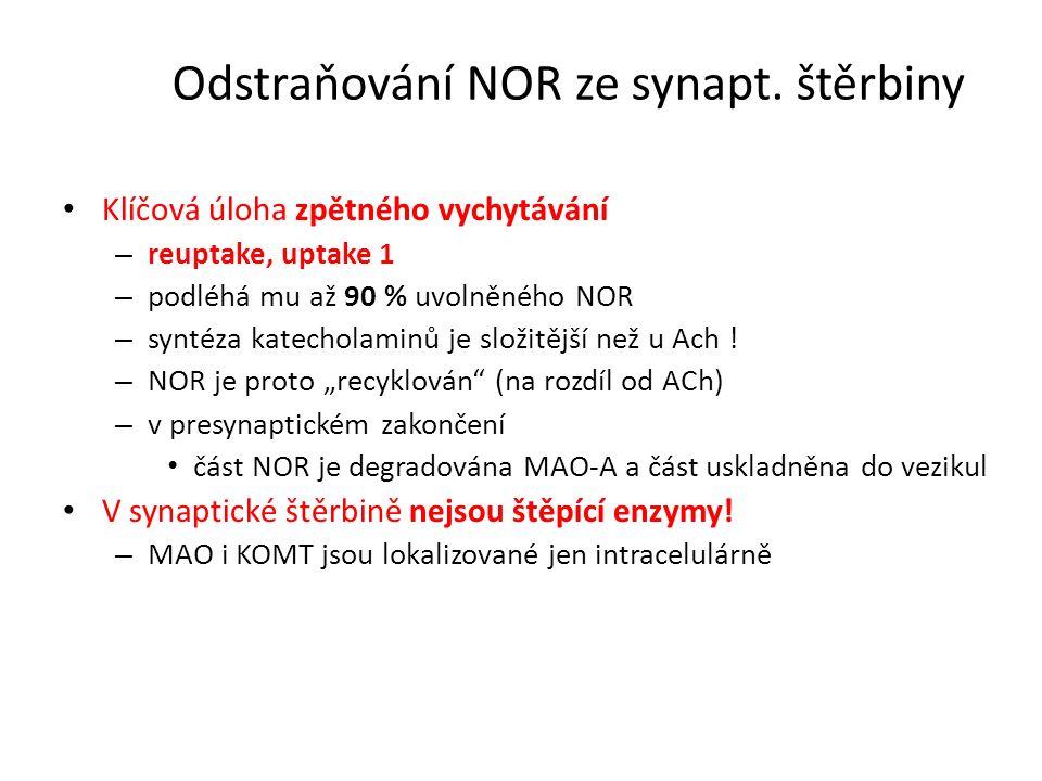 Odstraňování NOR ze synapt. štěrbiny Klíčová úloha zpětného vychytávání – reuptake, uptake 1 – podléhá mu až 90 % uvolněného NOR – syntéza katecholami