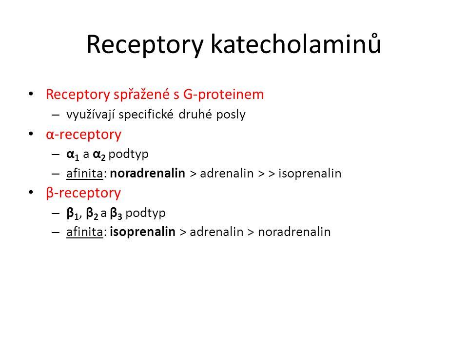 Receptory katecholaminů Receptory spřažené s G-proteinem – využívají specifické druhé posly α-receptory – α 1 a α 2 podtyp – afinita: noradrenalin > a
