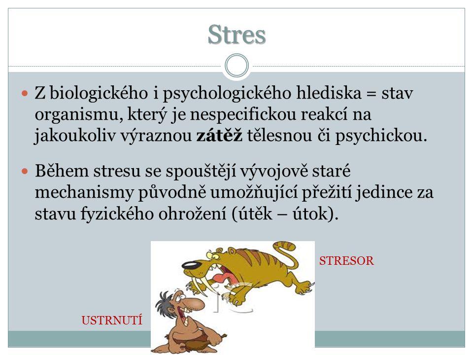 Faktory ovlivňující odezvu na stres Osobnost Kulturní zázemí Vrozené dispozice Minulé zkušenosti