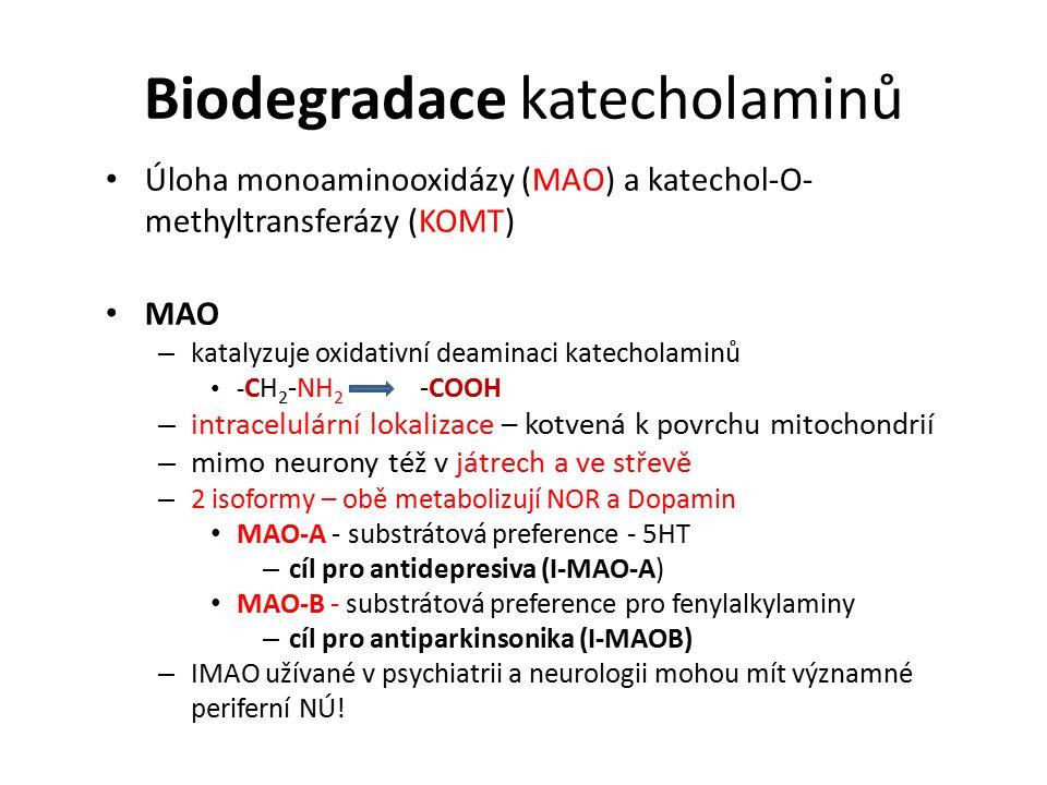 Biodegradace katecholaminů Úloha monoaminooxidázy (MAO) a katechol-O- methyltransferázy (KOMT) MAO – katalyzuje oxidativní deaminaci katecholaminů - CH 2 -NH 2 -COOH – intracelulární lokalizace – kotvená k povrchu mitochondrií – mimo neurony též v játrech a ve střevě – 2 isoformy – obě metabolizují NOR a Dopamin MAO-A - substrátová preference - 5HT – cíl pro antidepresiva (I-MAO-A) MAO-B - substrátová preference pro fenylalkylaminy – cíl pro antiparkinsonika (I-MAOB) – IMAO užívané v psychiatrii a neurologii mohou mít významné periferní NÚ!