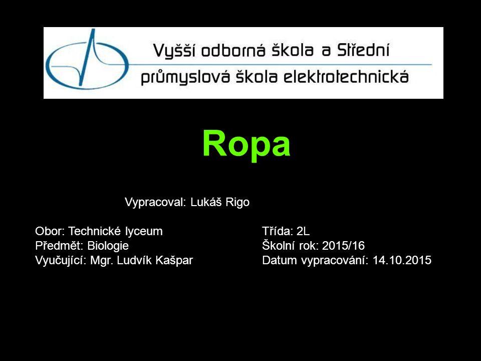 Ropa Vypracoval: Lukáš Rigo Obor: Technické lyceum Třída: 2L Předmět: Biologie Školní rok: 2015/16 Vyučující: Mgr.