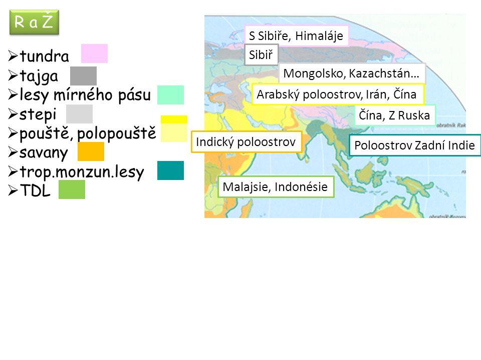 R a Ž  tundra  tajga  lesy mírného pásu  stepi  pouště, polopouště  savany  trop.monzun.lesy  TDL S Sibiře, Himaláje Sibiř Čína, Z Ruska Mongolsko, Kazachstán… Arabský poloostrov, Irán, Čína Indický poloostrov Poloostrov Zadní Indie Malajsie, Indonésie