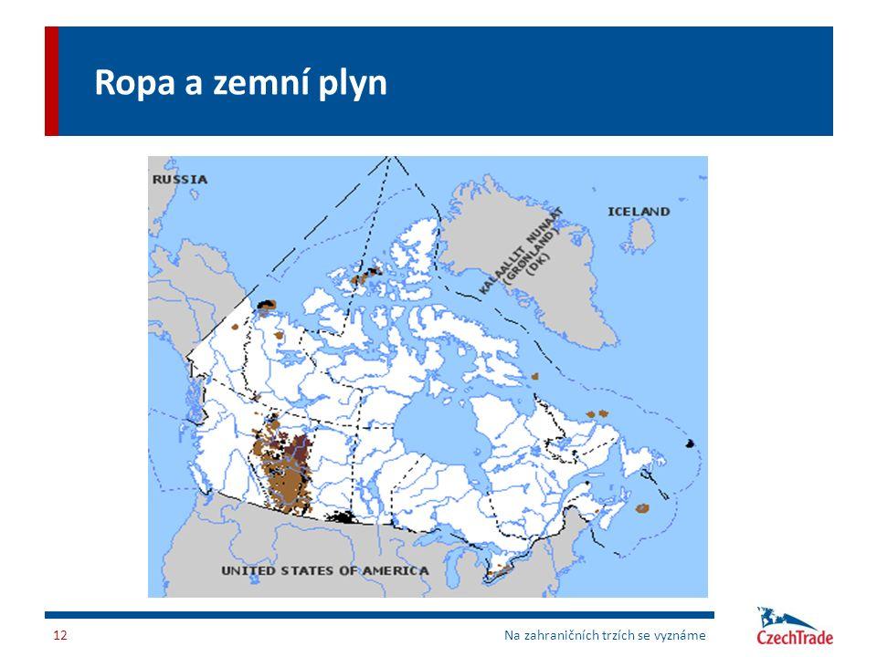 Ropa a zemní plyn Na zahraničních trzích se vyznáme12