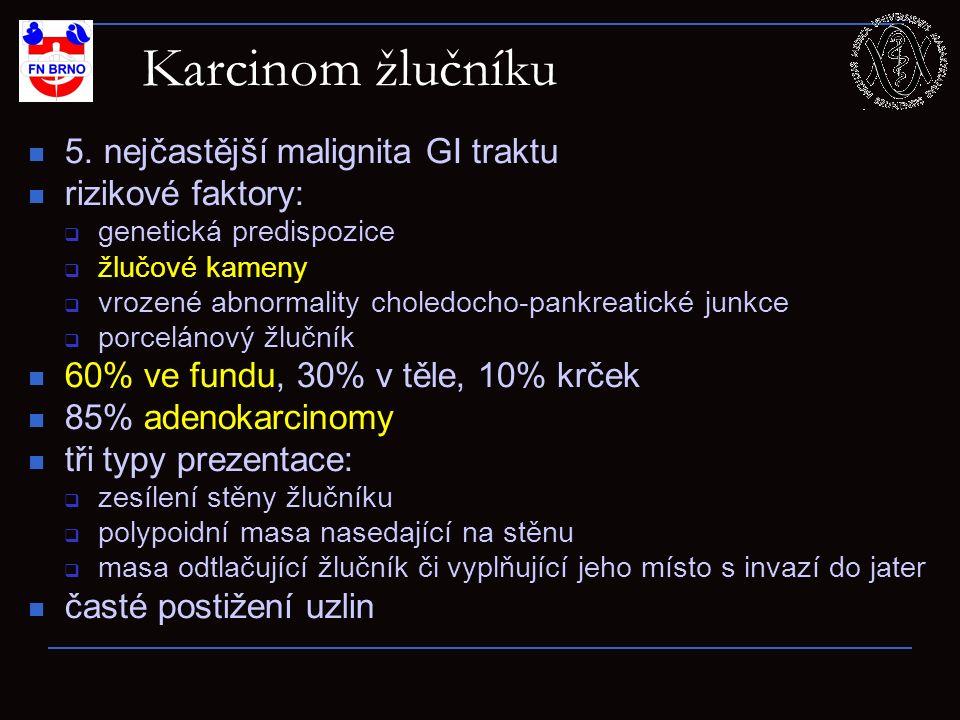 Z archivu Radiol. kliniky FN Hradec Králové