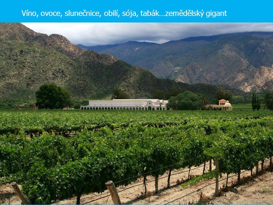 Víno, ovoce, slunečnice, obilí, sója, tabák…zemědělský gigant