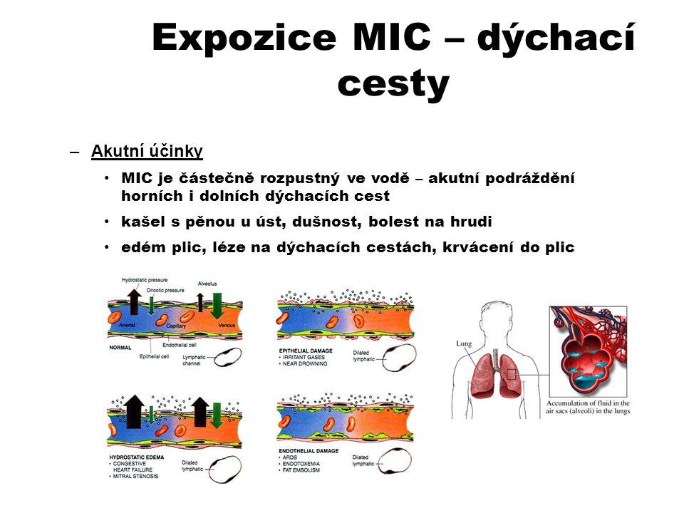 Expozice MIC – dýchací cesty –Akutní účinky MIC je částečně rozpustný ve vodě – akutní podráždění horních i dolních dýchacích cest kašel s pěnou u úst, dušnost, bolest na hrudi edém plic, léze na dýchacích cestách, krvácení do plic