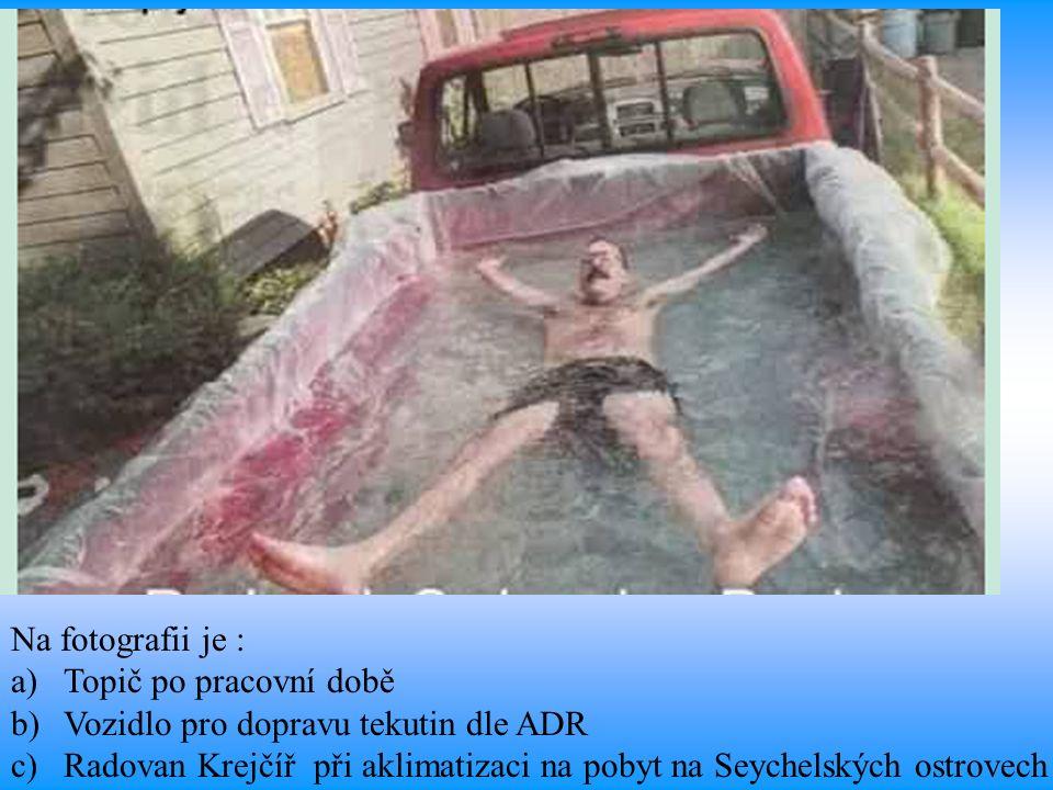 Na fotografii je : a)Topič po pracovní době b)Vozidlo pro dopravu tekutin dle ADR c)Radovan Krejčíř při aklimatizaci na pobyt na Seychelských ostrovech