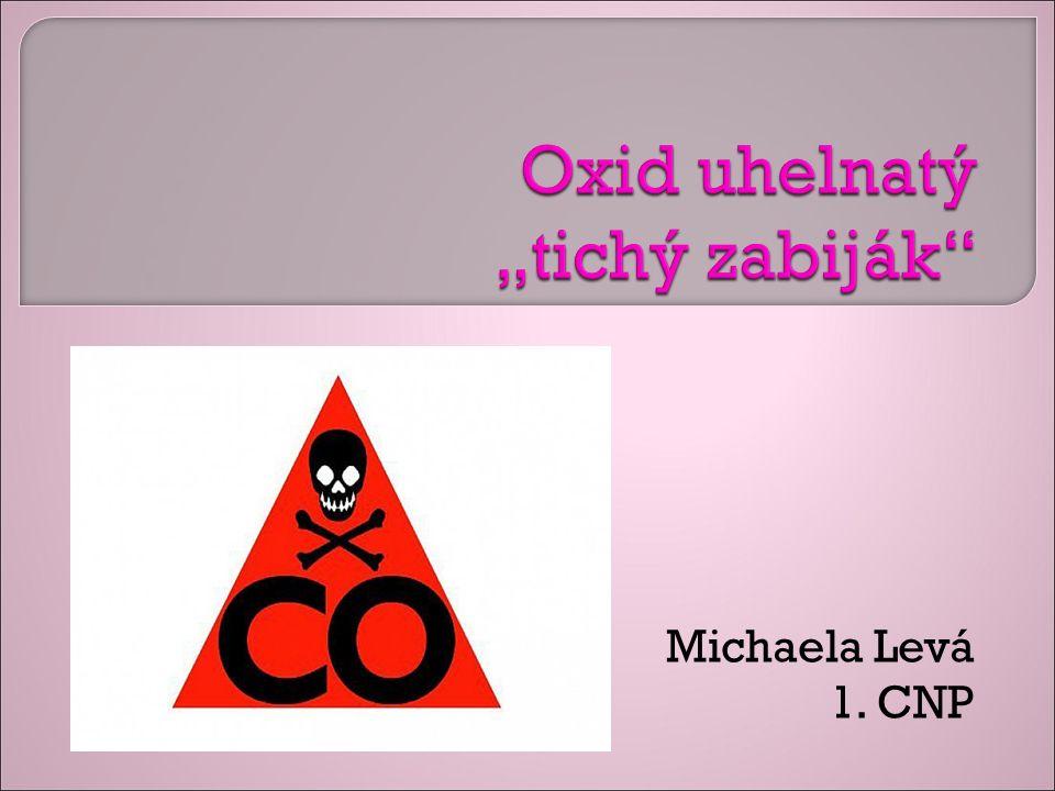 Michaela Levá 1. CNP