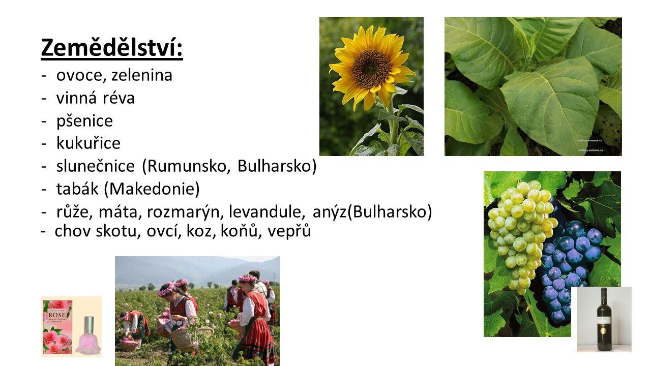 Zemědělství: -ovoce, zelenina -vinná réva -pšenice -kukuřice -slunečnice (Rumunsko, Bulharsko) -tabák (Makedonie) -růže, máta, rozmarýn, levandule, an