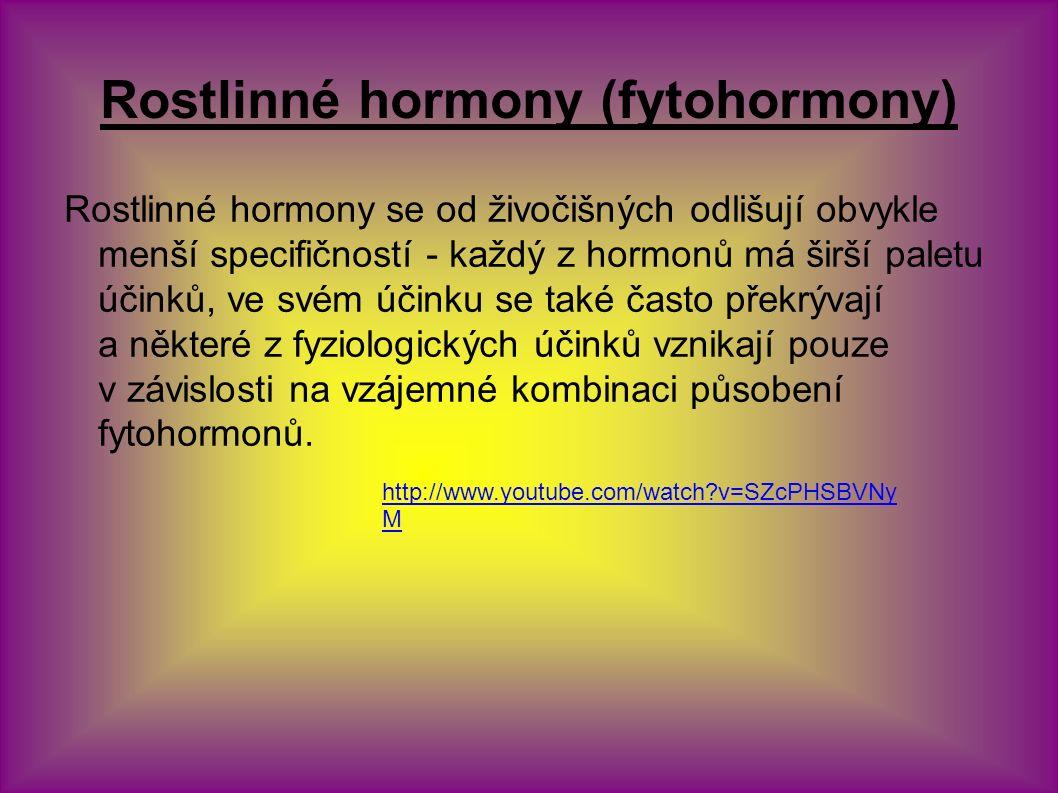 Rostlinné hormony (fytohormony) Rostlinné hormony se od živočišných odlišují obvykle menší specifičností - každý z hormonů má širší paletu účinků, ve