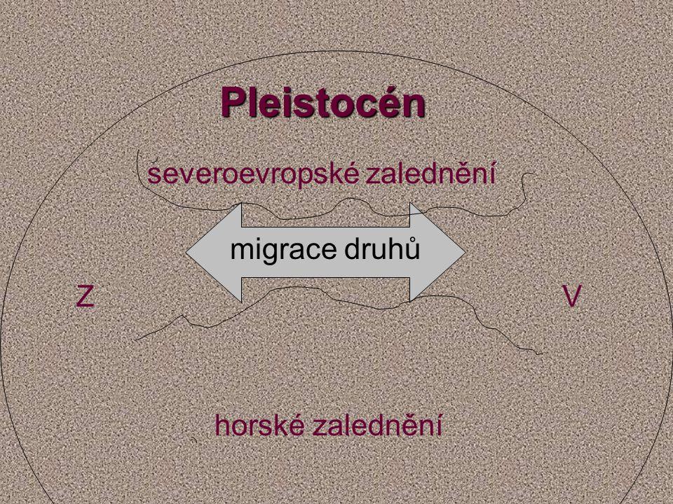 Pleistocén severoevropské zalednění horské zalednění ZV migrace druhů