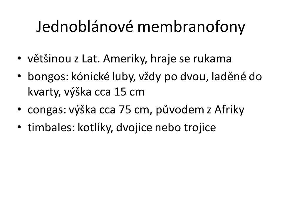 Jednoblánové membranofony většinou z Lat. Ameriky, hraje se rukama bongos: kónické luby, vždy po dvou, laděné do kvarty, výška cca 15 cm congas: výška