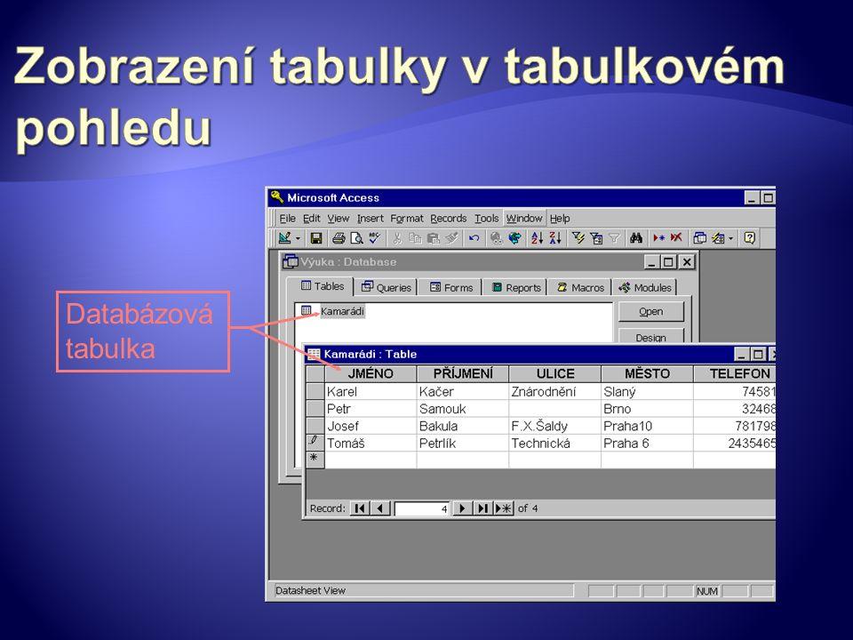Databázová tabulka