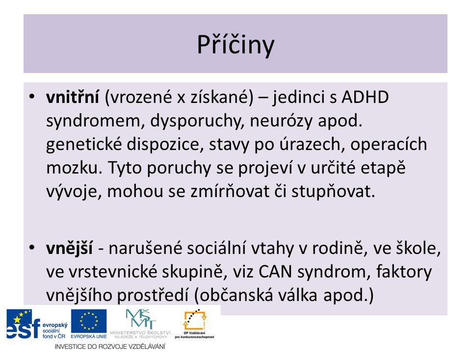 Příčiny vnitřní (vrozené x získané) – jedinci s ADHD syndromem, dysporuchy, neurózy apod. genetické dispozice, stavy po úrazech, operacích mozku. Tyto