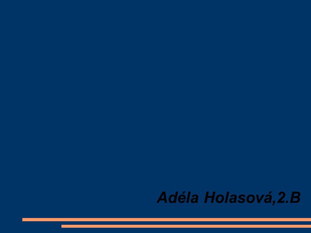 Adéla Holasová,2.B