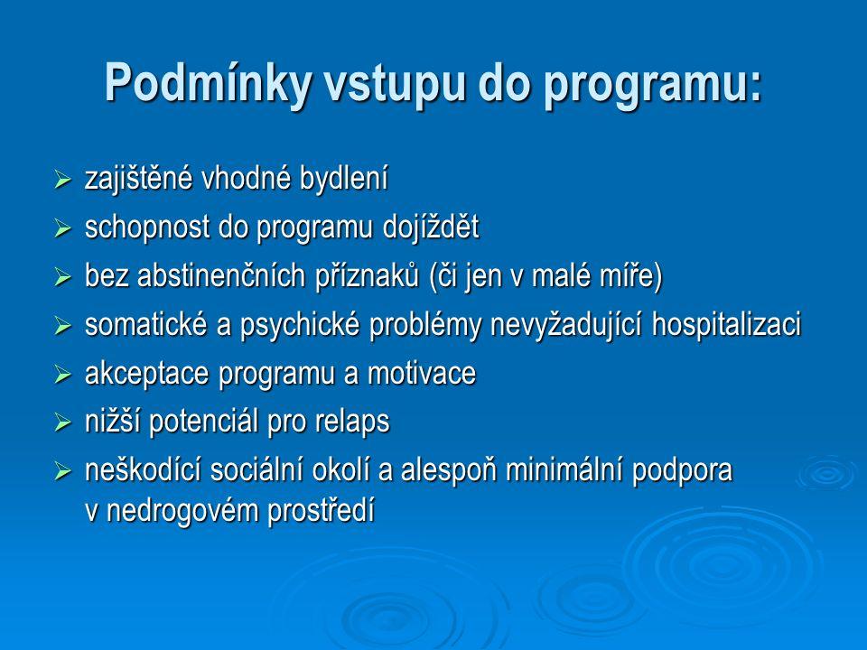 Podmínky vstupu do programu:  zajištěné vhodné bydlení  schopnost do programu dojíždět  bez abstinenčních příznaků (či jen v malé míře)  somatické