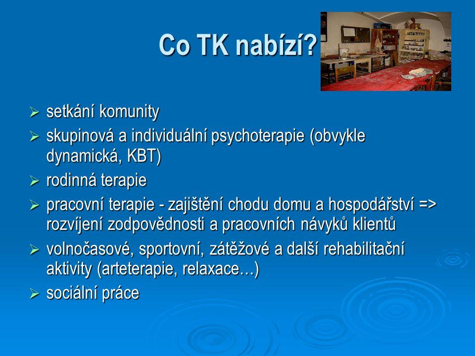 Co TK nabízí?  setkání komunity  skupinová a individuální psychoterapie (obvykle dynamická, KBT)  rodinná terapie  pracovní terapie - zajištění ch