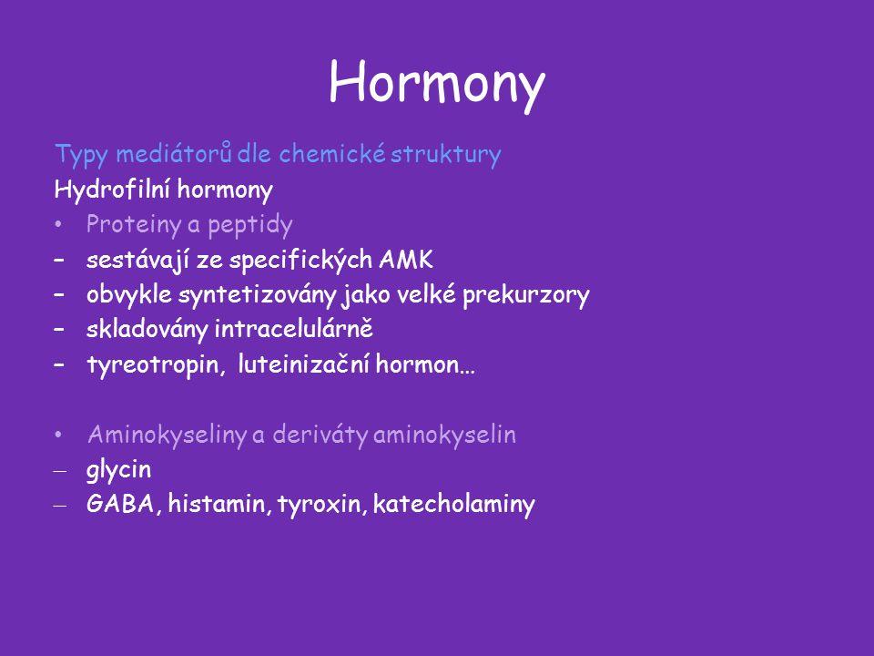 Hormony Typy mediátorů dle chemické struktury Hydrofilní hormony Proteiny a peptidy –sestávají ze specifických AMK –obvykle syntetizovány jako velké prekurzory –skladovány intracelulárně –tyreotropin, luteinizační hormon… Aminokyseliny a deriváty aminokyselin – glycin – GABA, histamin, tyroxin, katecholaminy