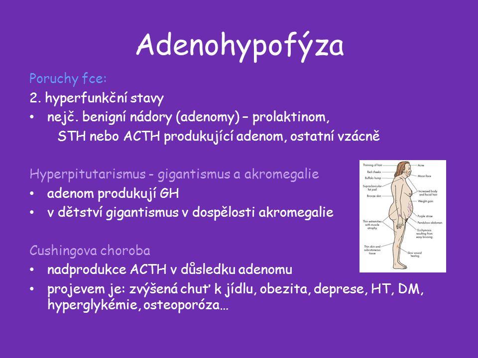 Adenohypofýza Poruchy fce: 2. hyperfunkční stavy nejč.