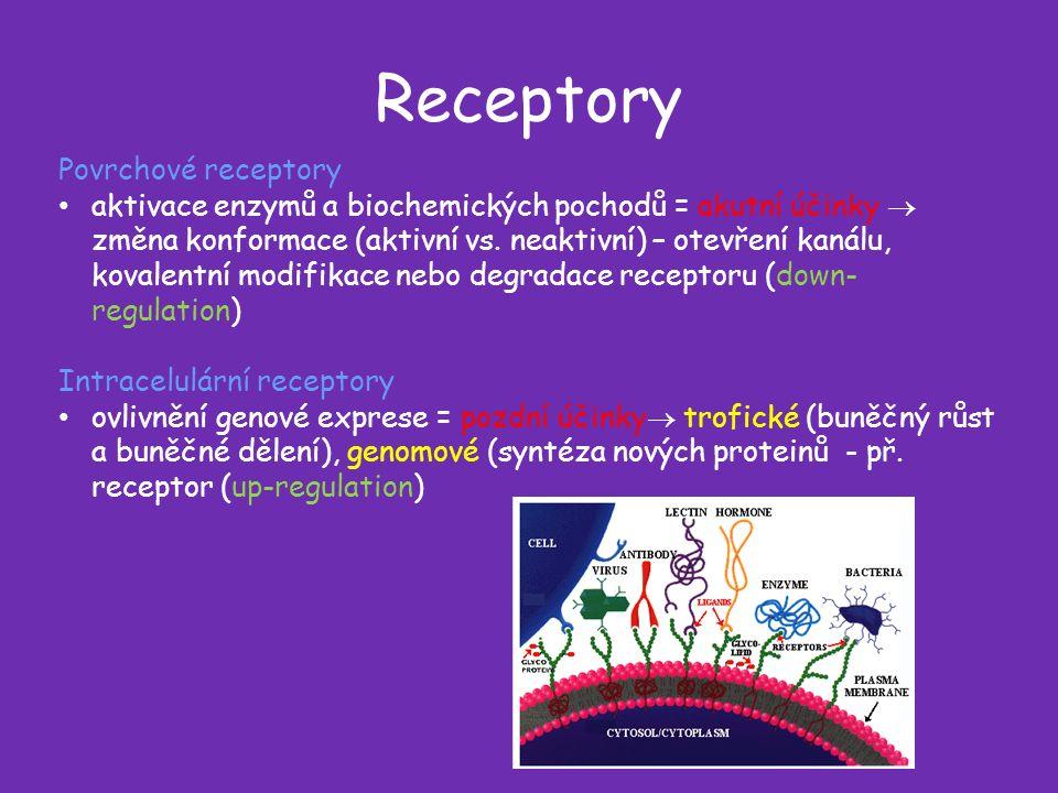 Receptory Povrchové receptory aktivace enzymů a biochemických pochodů = akutní účinky  změna konformace (aktivní vs.
