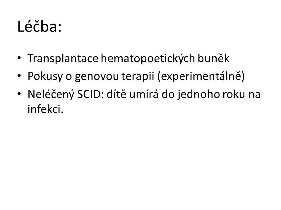 Léčba: Transplantace hematopoetických buněk Pokusy o genovou terapii (experimentálně) Neléčený SCID: dítě umírá do jednoho roku na infekci.