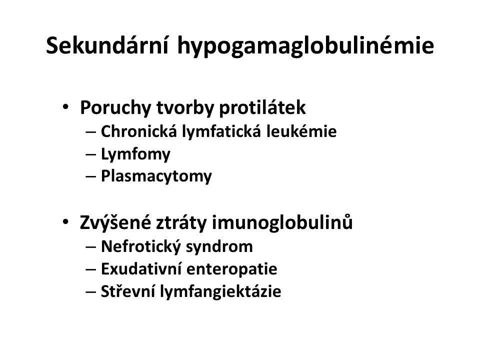 Sekundární hypogamaglobulinémie Poruchy tvorby protilátek – Chronická lymfatická leukémie – Lymfomy – Plasmacytomy Zvýšené ztráty imunoglobulinů – Nefrotický syndrom – Exudativní enteropatie – Střevní lymfangiektázie