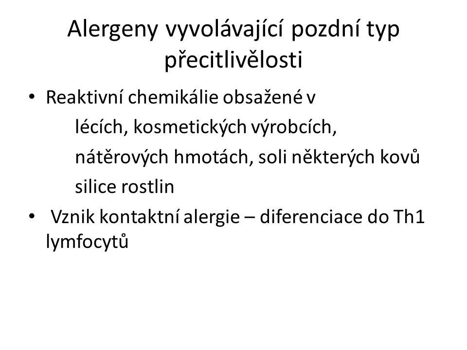 Alergeny vyvolávající pozdní typ přecitlivělosti Reaktivní chemikálie obsažené v lécích, kosmetických výrobcích, nátěrových hmotách, soli některých kovů silice rostlin Vznik kontaktní alergie – diferenciace do Th1 lymfocytů