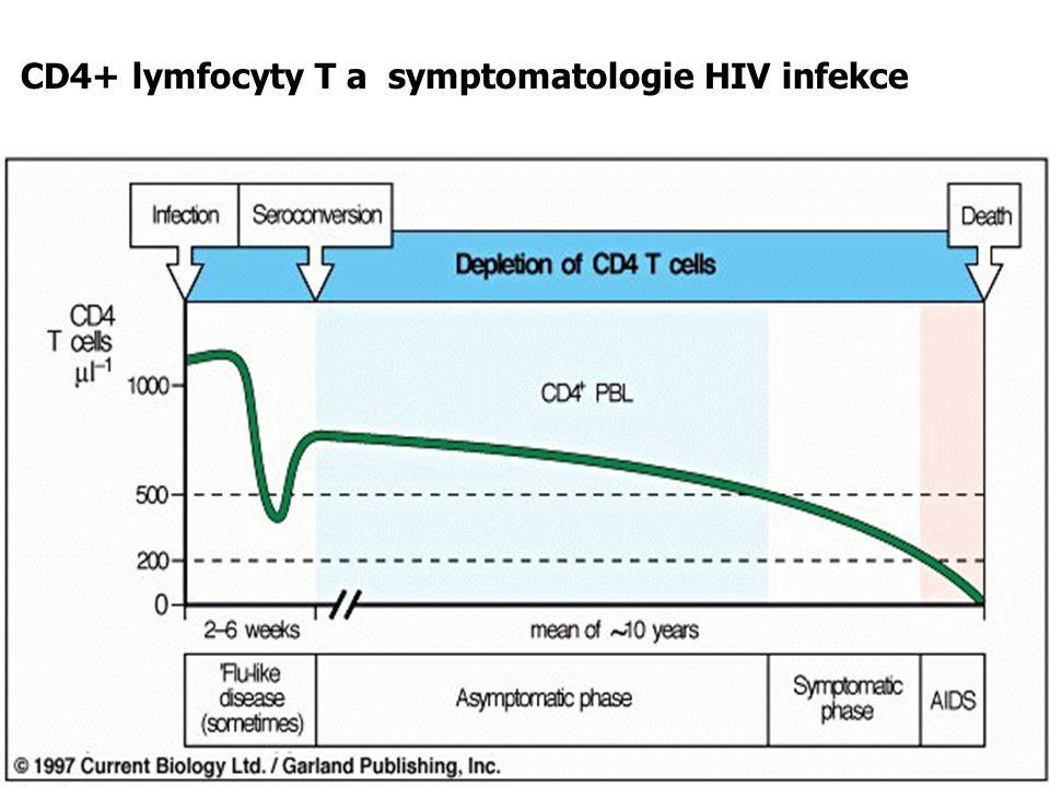 CD4+ lymfocyty T a symptomatologie HIV infekce