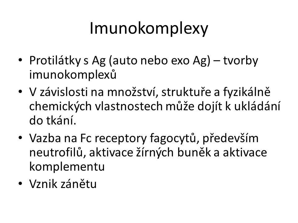 Imunokomplexy Protilátky s Ag (auto nebo exo Ag) – tvorby imunokomplexů V závislosti na množství, struktuře a fyzikálně chemických vlastnostech může dojít k ukládání do tkání.