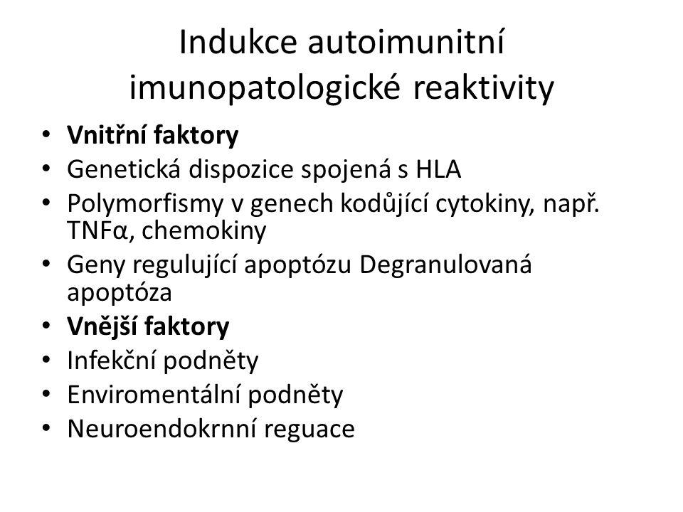 Indukce autoimunitní imunopatologické reaktivity Vnitřní faktory Genetická dispozice spojená s HLA Polymorfismy v genech kodůjící cytokiny, např.