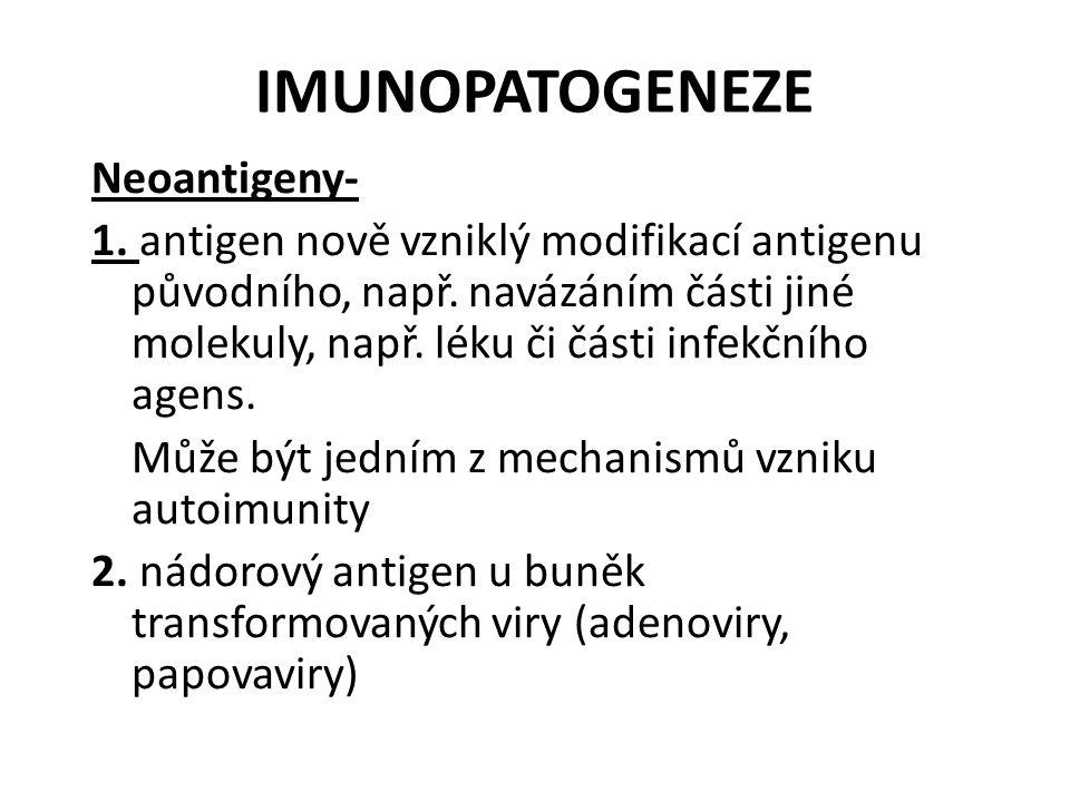 IMUNOPATOGENEZE Neoantigeny- 1. antigen nově vzniklý modifikací antigenu původního, např.