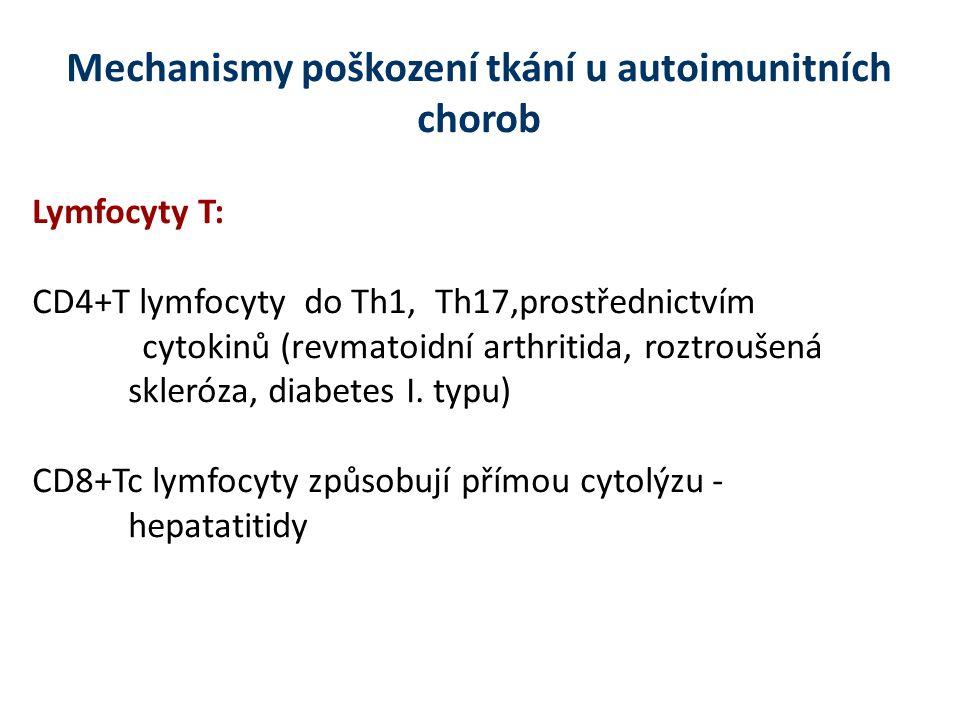 Mechanismy poškození tkání u autoimunitních chorob Lymfocyty T: CD4+T lymfocyty do Th1, Th17,prostřednictvím cytokinů (revmatoidní arthritida, roztroušená skleróza, diabetes I.