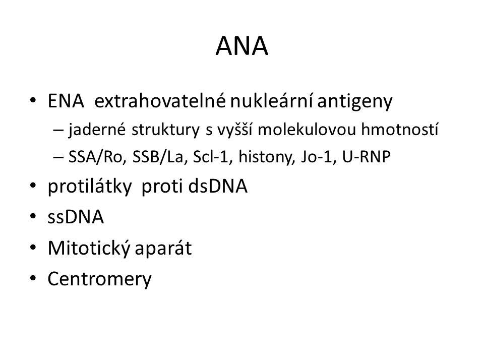 ANA ENA extrahovatelné nukleární antigeny – jaderné struktury s vyšší molekulovou hmotností – SSA/Ro, SSB/La, Scl-1, histony, Jo-1, U-RNP protilátky proti dsDNA ssDNA Mitotický aparát Centromery