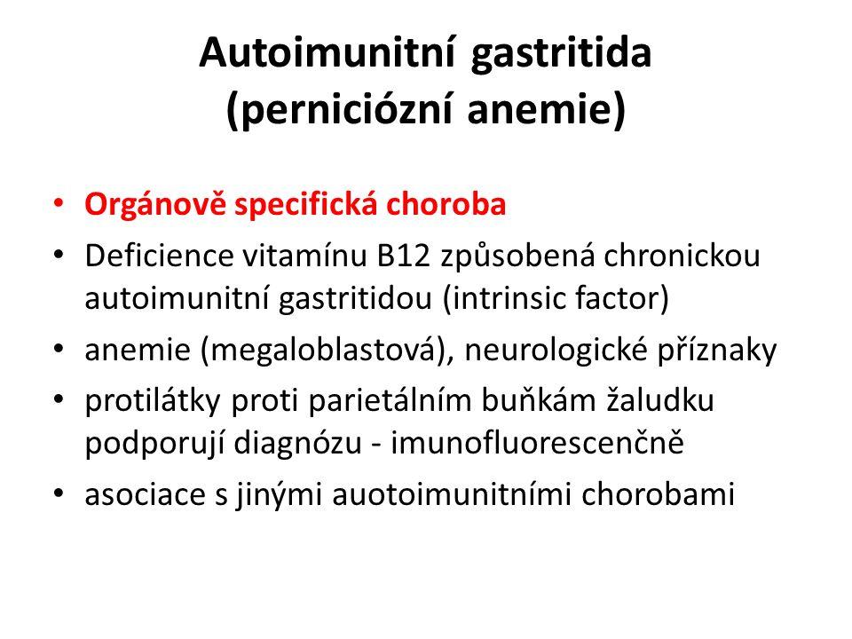 Autoimunitní gastritida (perniciózní anemie) Orgánově specifická choroba Deficience vitamínu B12 způsobená chronickou autoimunitní gastritidou (intrinsic factor) anemie (megaloblastová), neurologické příznaky protilátky proti parietálním buňkám žaludku podporují diagnózu - imunofluorescenčně asociace s jinými auotoimunitními chorobami
