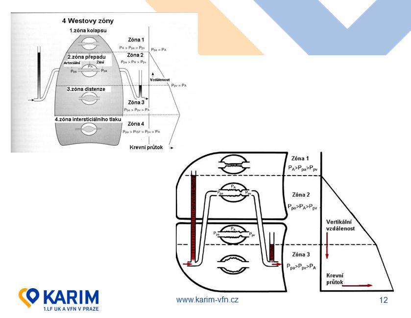 www.karim-vfn.cz 12