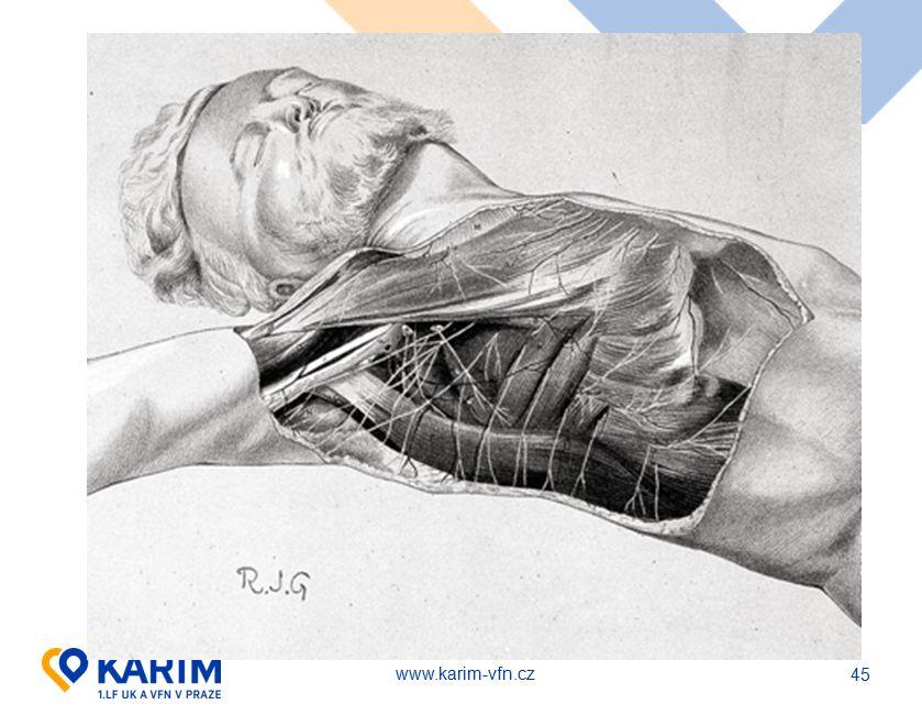 www.karim-vfn.cz 45