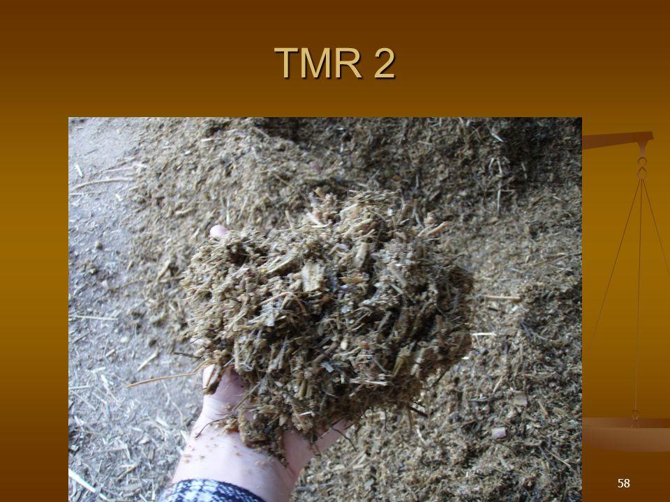 TMR 1 57