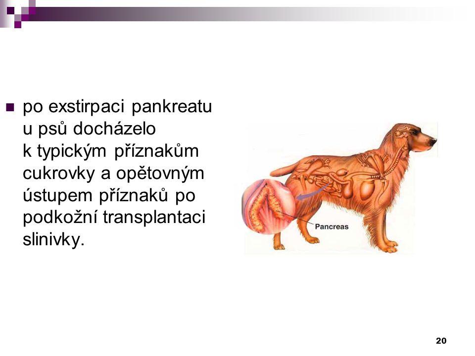 po exstirpaci pankreatu u psů docházelo k typickým příznakům cukrovky a opětovným ústupem příznaků po podkožní transplantaci slinivky. 20