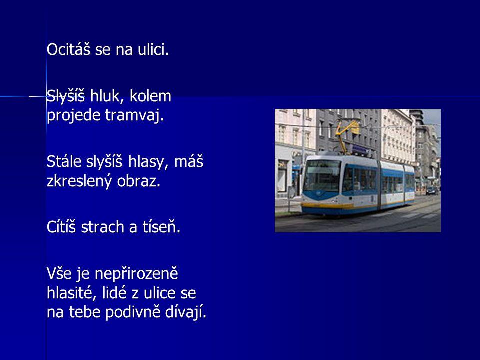 Ocitáš se na ulici. Slyšíš hluk, kolem projede tramvaj. Stále slyšíš hlasy, máš zkreslený obraz. Cítíš strach a tíseň. Vše je nepřirozeně hlasité, lid