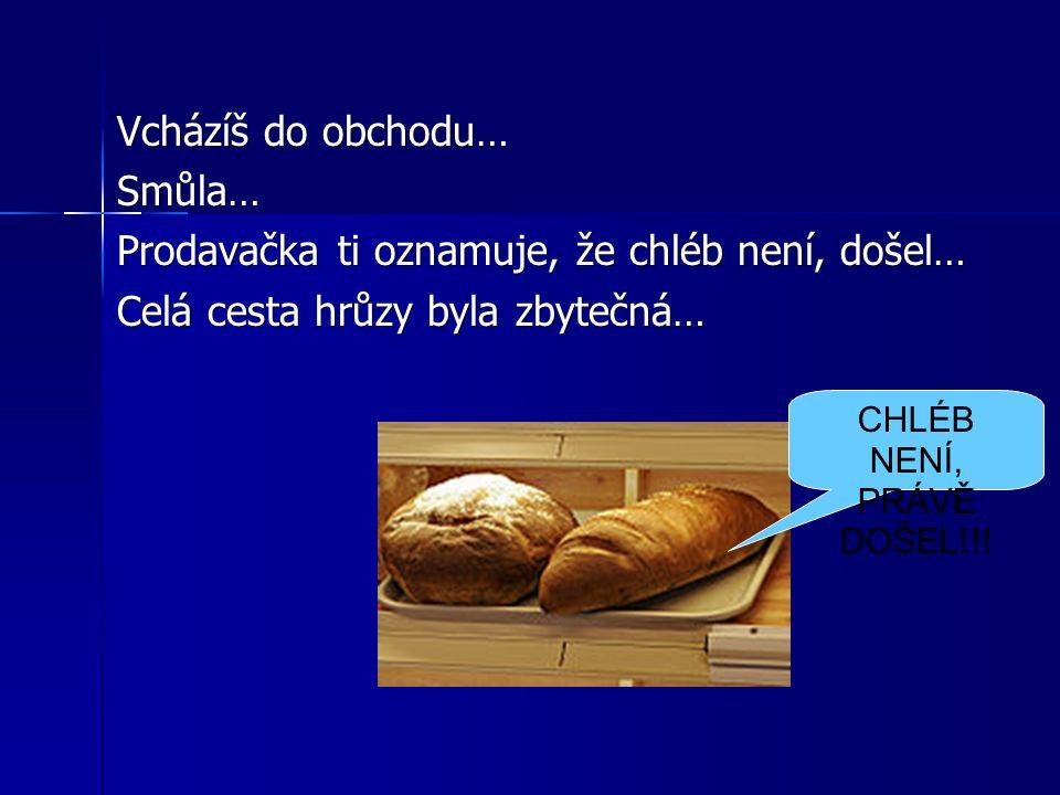 Vcházíš do obchodu… Smůla… Prodavačka ti oznamuje, že chléb není, došel… Celá cesta hrůzy byla zbytečná… CHLÉB NENÍ, PRÁVĚ DOŠEL!!!
